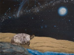 Turtle-Dreaming